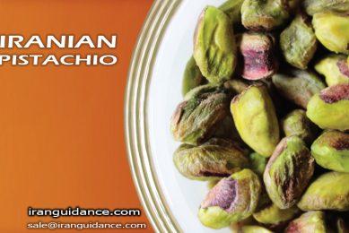 iranian-pistachio-iranguidance