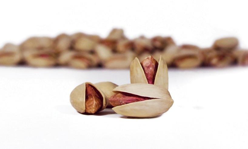 akbari pistachio-iranguidance