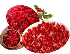 puffy barberry-iranguidance