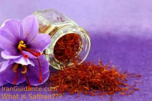 what-is-saffron2-iranguidance