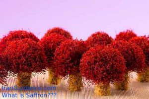 what-is-saffron4-iranguidance
